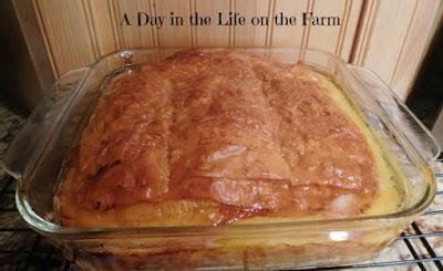 Phyllo Custard Pie